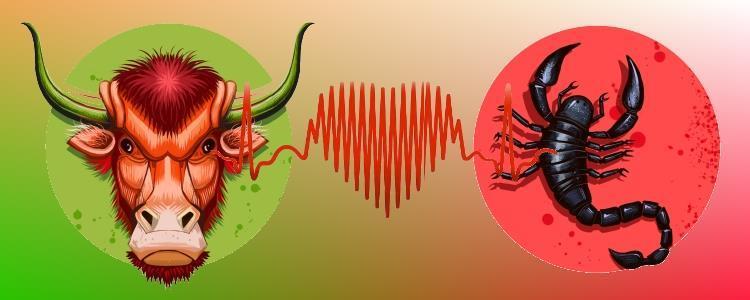 совместимость Тельца и Скорпиона
